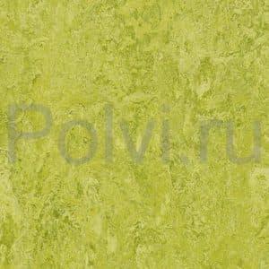 Линолеум натуральный Marmoleum Real 3224/322435 chartreuse