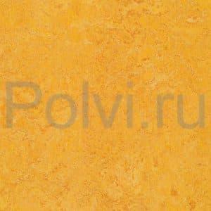 Линолеум натуральный Marmoleum Real 3225/322535 dandelion